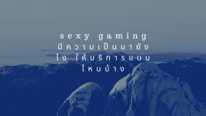 sexy gaming มีความเป็นมายังไง ให้บริการแบบไหนบ้าง